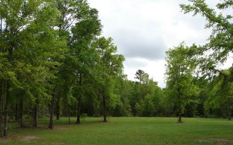 LOT17 SW MANDIBA DRIVE, Lake City, FL 32024