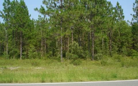 TBD SE CR 255, Lee, FL 32059