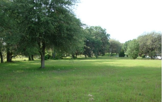 TBD NW ARMADILLO LANE, Lake City, FL 32055