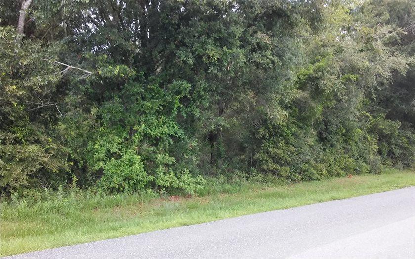 165TH ROAD, Live Oak, FL 32060