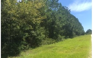 LOT 7 SW EXPLORER GLEN, Fort White, FL 32038