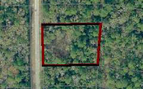 205 CT, Live Oak, FL 32060