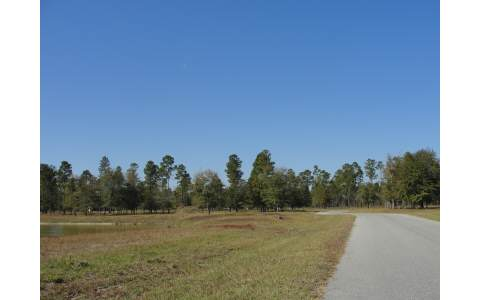 TURKEY RIDGE, Lake Butler, FL 32054