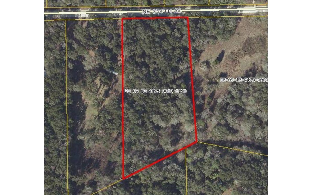 LOT19 NE 354TH AVE, Old Town, FL 32680