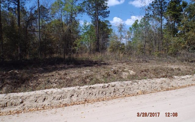TBD SW DAISY ROAD, Lake City, FL 32024