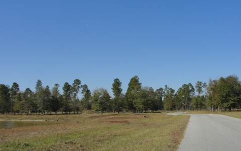 TBD TURKEY RIDGE RD, Lake Butler, FL 32054