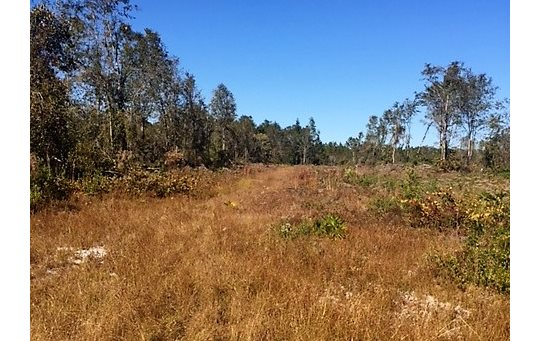 000 SE CR 135, White Springs, FL 32096