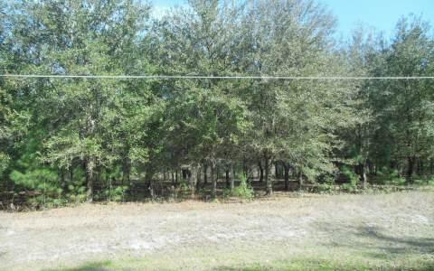 TBD NW 104TH AVE., Jasper, FL 32052