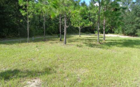 1189 NW SOPHIE DRIVE, White Springs, FL 32096