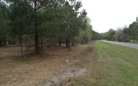 LOT 22 (CR252) PINEMOUNT RD, Live Oak, FL 32062