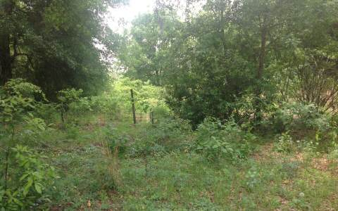 LOT 11 169TH ROAD, Live Oak, FL 32060
