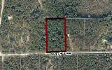 TBD 254TH TERRACE, OBrien, FL 32071
