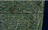 NW QUAIL TRAIL, Mayo, FL 32066