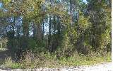 NW AMANDA ST., Lake City, FL 32055